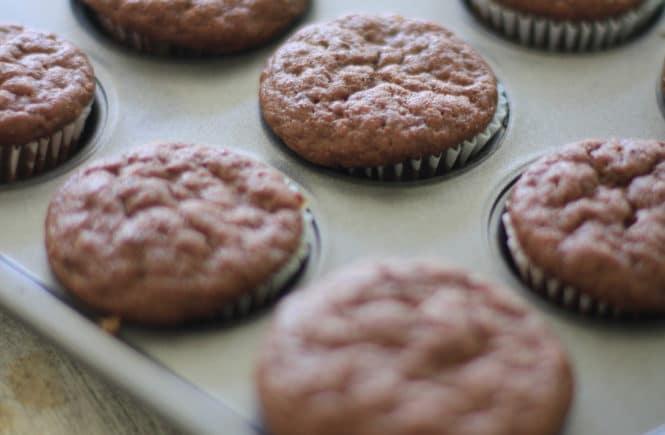 chocolate zucchini muffin recipe