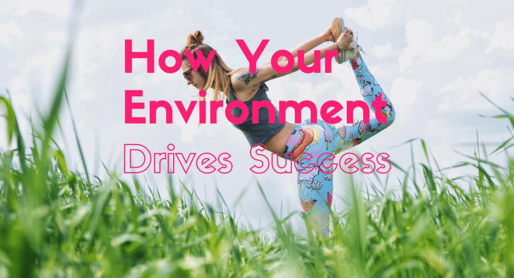 environmental success